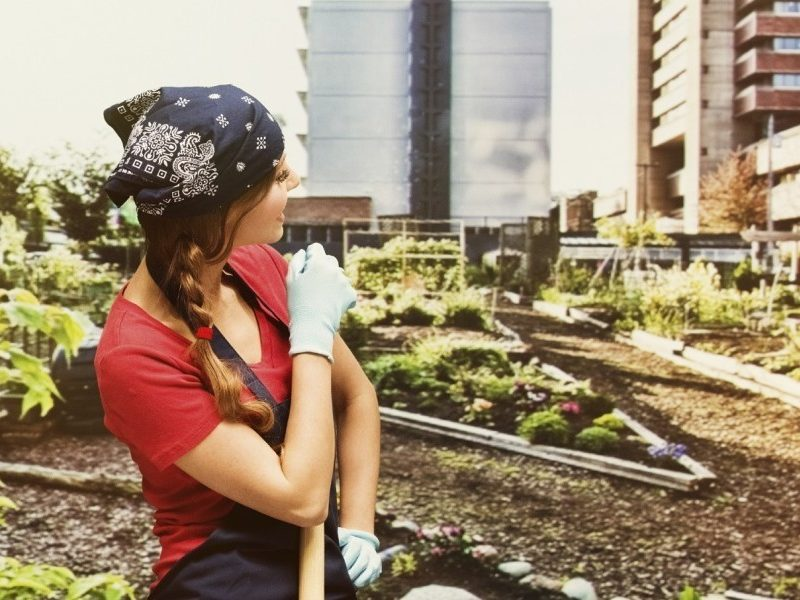 Urban agriculter